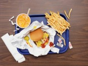 Obesity and health risks