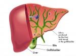 bile-acids